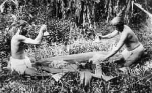 Taro in Hawaiian culture - Hawaiian men pounding poi, c. 1890