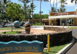 Diamond Head Luau includes free entrance to the Waikiki Aquarium
