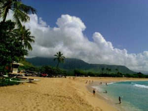 How the locals luau - Beach parks are popular for luaus